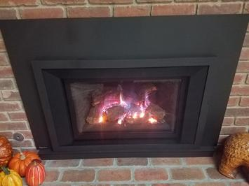 Regency LRI4E Gas Insert